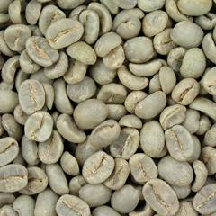 ongebrande koffiebonen kopen